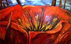 Poppy Detail - Mixed Media on Wood (Available for Sale