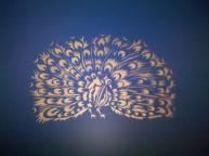 Duggal Peacock #3
