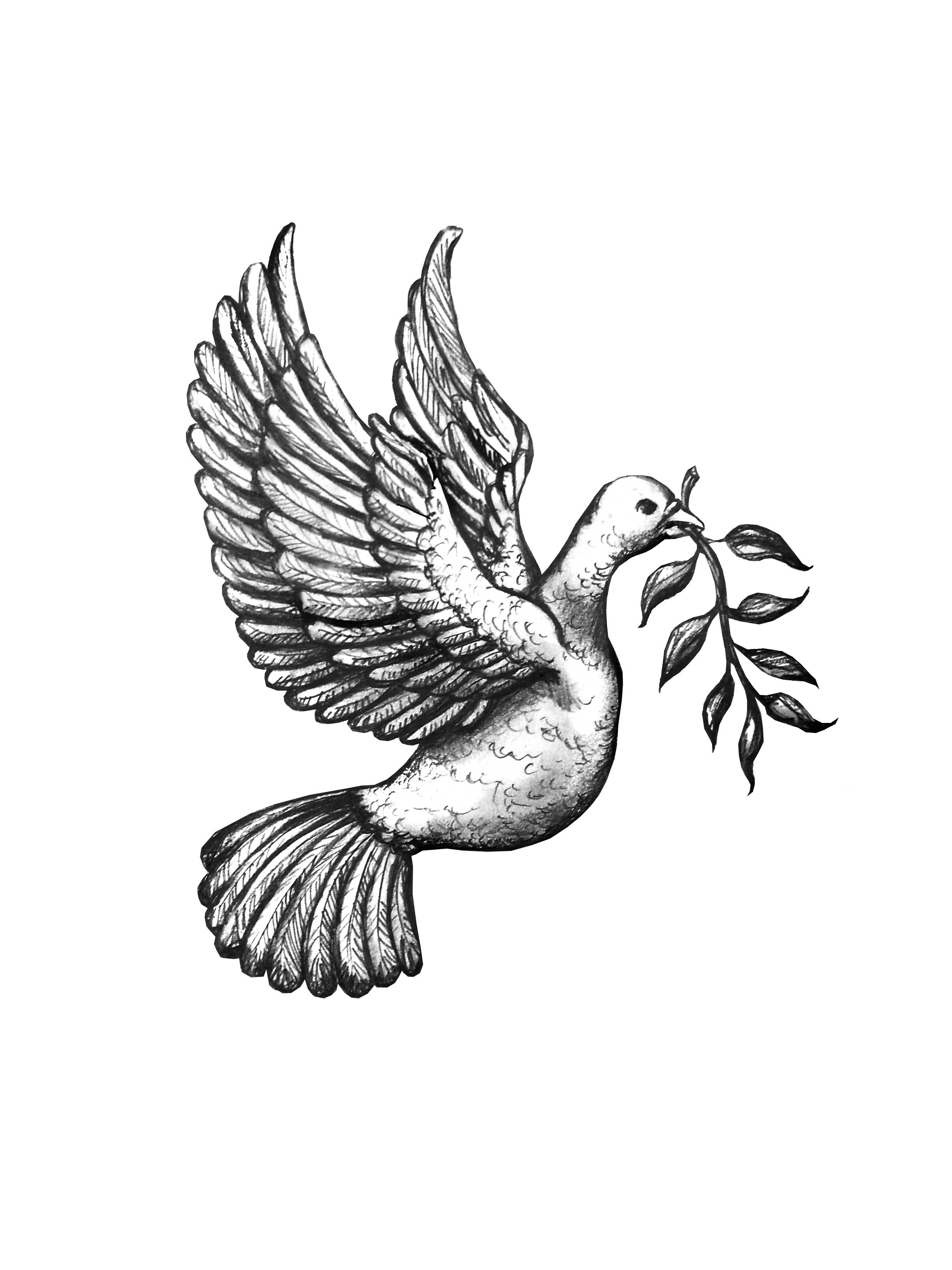 Flying Dove Tattoo Designs Peace-dove-tattoo.jpgDove Bird Drawing Tattoo