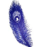 Blue China #6