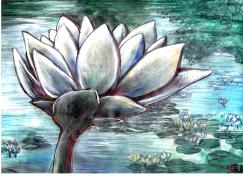 Water Lily - Acrylic on Paper - For Sale