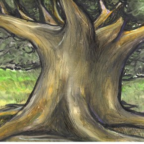 Tree - Oil Pastel on Paper - For Sale